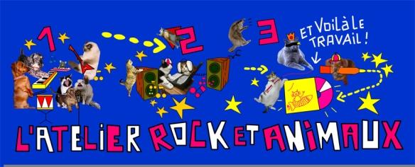 rocketanimaux